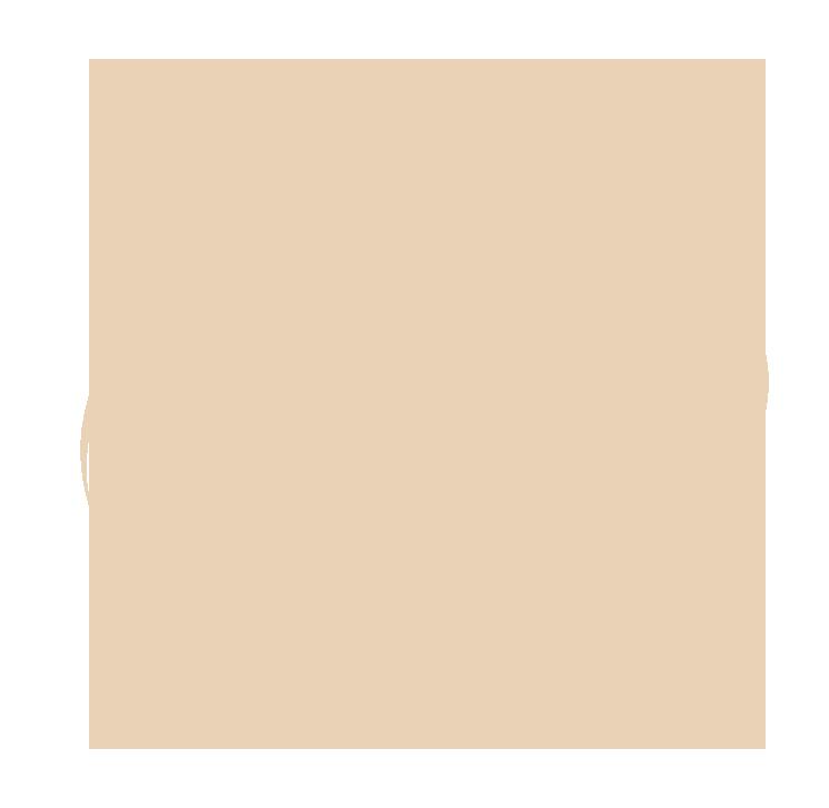 Histoire des rives | Le bois flotté